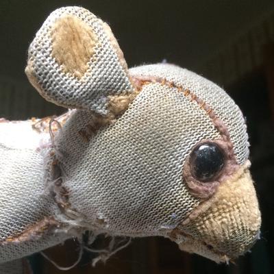 Old teddy Bear / dog