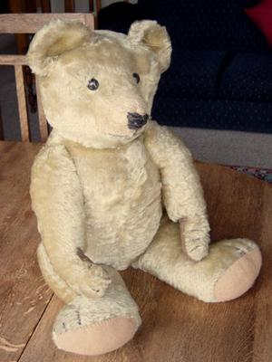 teddy bear sitting