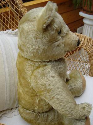 side view of teddy bear