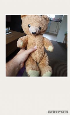 36 year old teddy bear