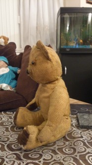 50 Year Old Teddy Bear side view