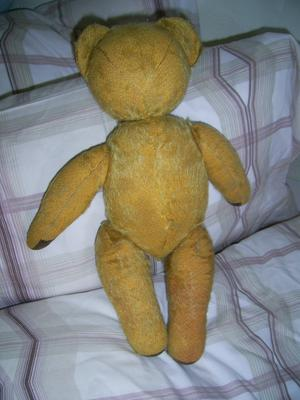 Little Ted back view