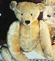 German Teddy Bear