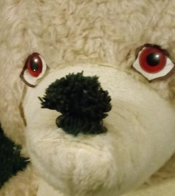 face of 1960's teddy bear