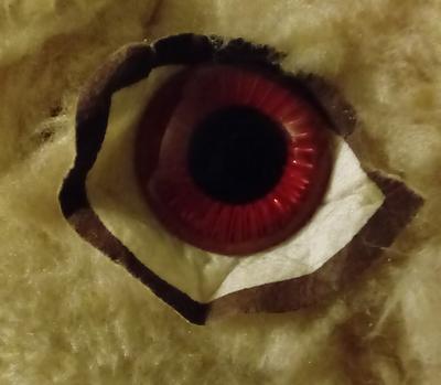 Unusual eye of a 1960's teddy bear