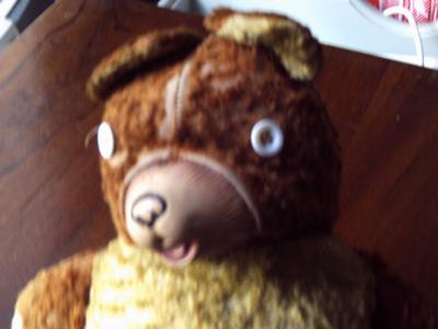 A very worn teddy bear face