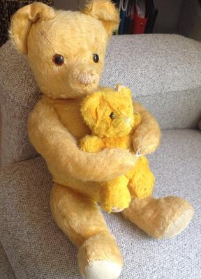 teddy bear with its baby