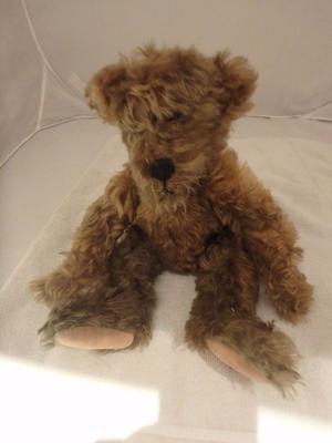 Mystery Teddy Bear