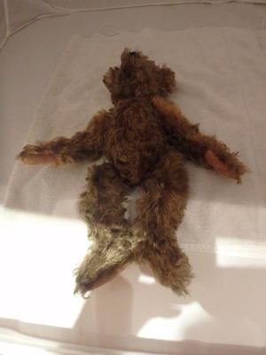Mystery Teddy Bear Lying down