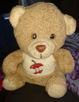 Applebelly bear