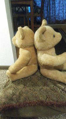Are these Steiff bears?