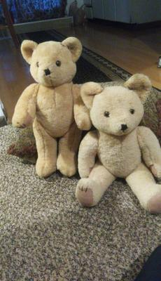 Two lovely teddy bears