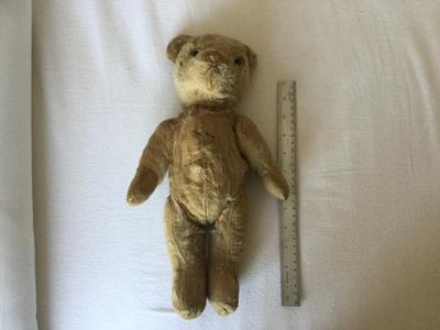 old Attic find bear