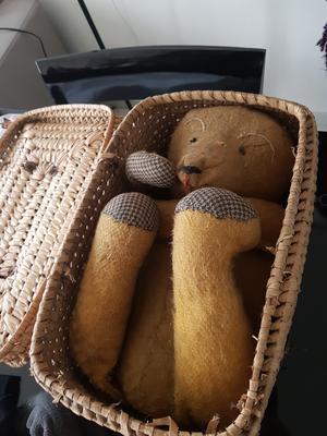 teddy in a basket