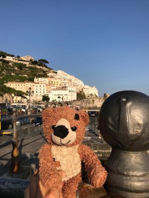 Gimo the Italian Bear