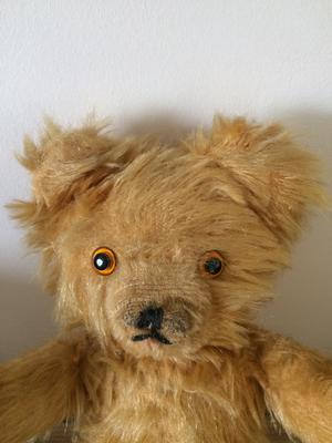 Benji Bear  face