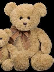 Benson Bearington Bears
