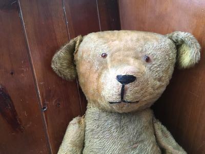 face of big teddy bear