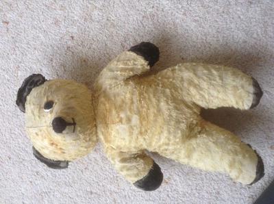 yellow gold teddy bear