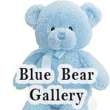 Blue Bear Gallery