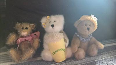 Boyd Bears and Ann chapman Bear