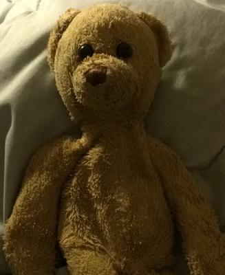 Brown Teddy Bear who is he?