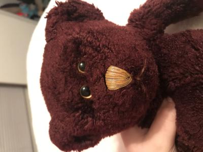 face of Burgundy Teddy Bear