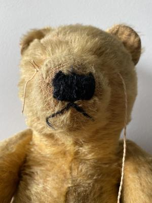 face of Australian teddy Bear