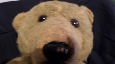 close up of the face of my teddy bear