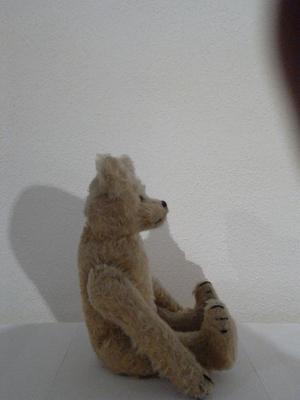 Side view of old teddy bear
