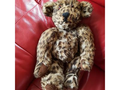 cheeta teddy bear