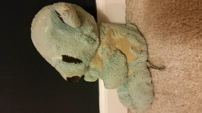 side view of childhoos bear