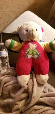 Color block childrens teddy