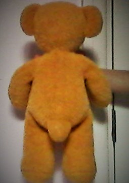 Teddy- back standing view