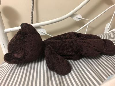 side view of dark teddy bear