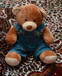 Dressed Teddy Bear picture by beggs