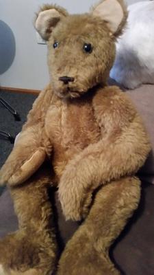 Edward the Kangaroo teddy?