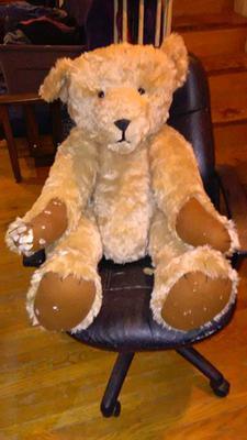 Flea Market Teddy Bear