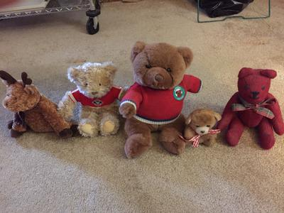 Solow Teddy Bears