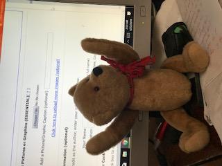 Gae Sharp Jointed Teddy Bear