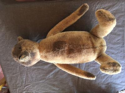 teddy bear with long body