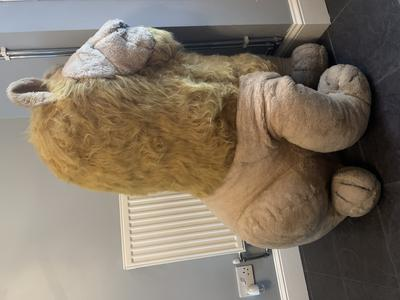 Giant Toy lion
