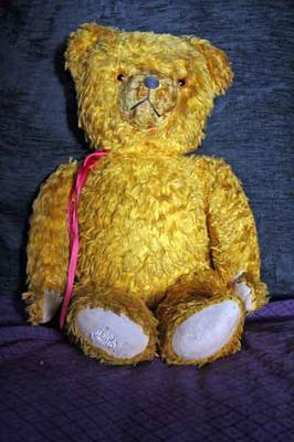 Goldie My Teddy Bear