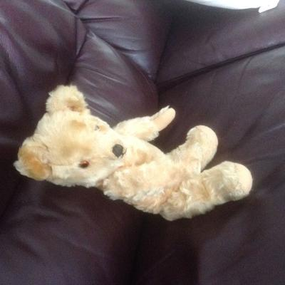 Edward the teddy bear