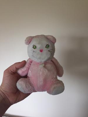 Is This A teddy or A Cat