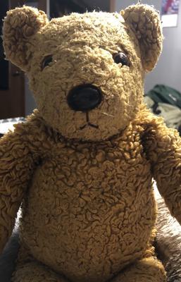 brown teddy bear face