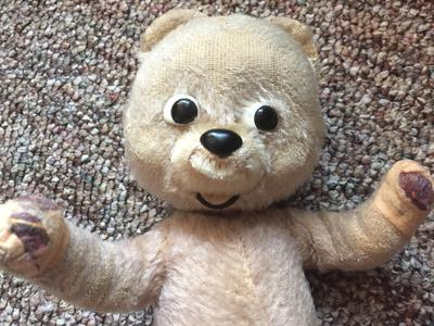 teddy bear with big eyes