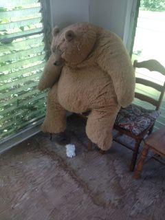 Teddy bear sitting in the corner