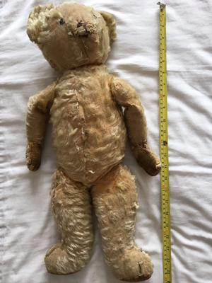measuring a teddy bear