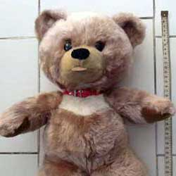 Teddy bears worth old Antique and